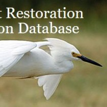 The database includes details on every restoration project completed in the Sound since 1998,